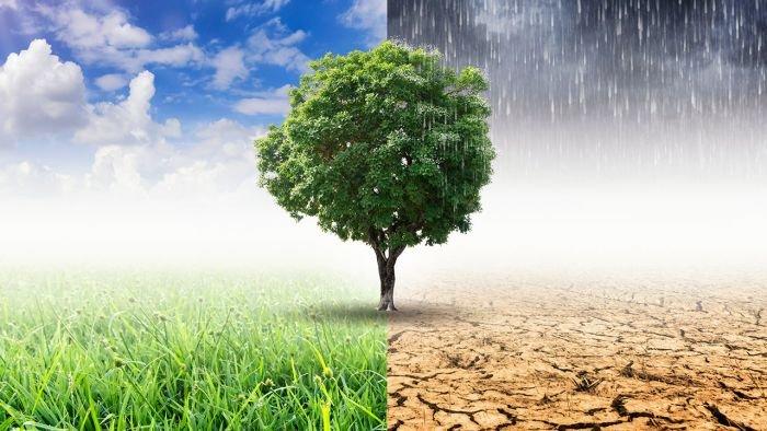 Ochrona klimatu - Przewodnik po dofinansowaniach